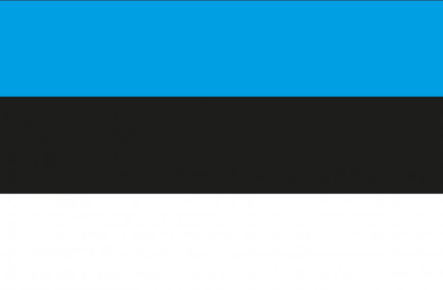 Vlag Estland