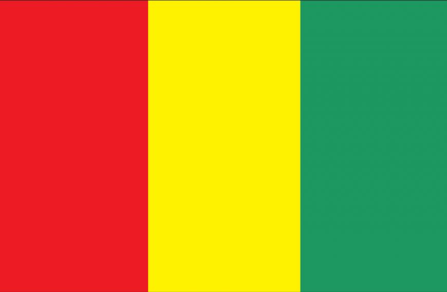 Vlag Guinee