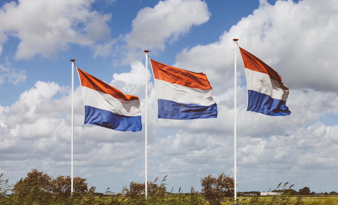 Nederlandse vlaggen in landschap